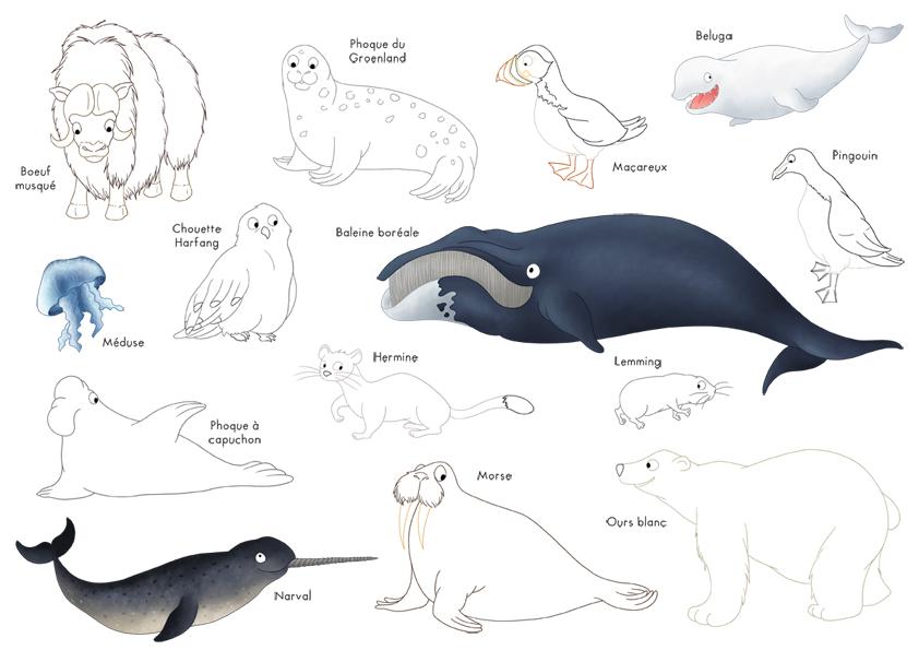 Coloriages les animaux de l 39 arctique dinett illustration - Animaux pole nord ...